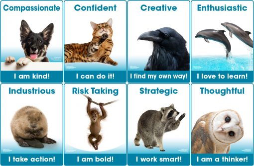 Successful Learner Traits short