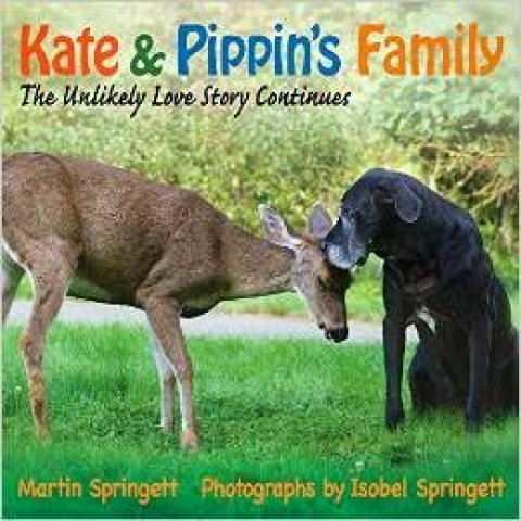 Kate and Pippens Family